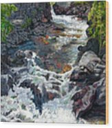 Rushing Waters Wood Print by John Lautermilch