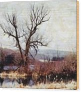 Rustic Reflections Wood Print by Janine Riley