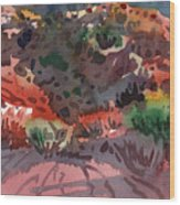 Sagebrush Wood Print by Donald Maier
