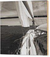 Sailing Under The Arthur Ravenel Jr. Bridge In Charleston Sc Wood Print by Dustin K Ryan