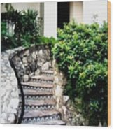 San Antonio Stairway Wood Print by Will Borden