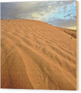 Sand Dune At Great Sand Hills In Scenic Saskatchewan Wood Print by Mark Duffy
