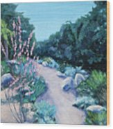 Santa Barbara Botanical Gardens Wood Print by M Schaefer