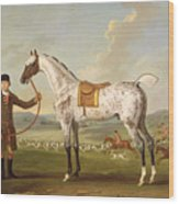 Scipio - Colonel Roche's Spotted Hunter Wood Print by Thomas Spencer