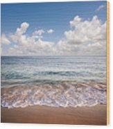 Seascape Wood Print by Carlos Caetano
