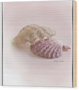 Seashell Love Wood Print by Betty LaRue