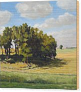 September Summer Wood Print by Bruce Morrison