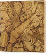 Settled  Wood Print by Jo Schwartz