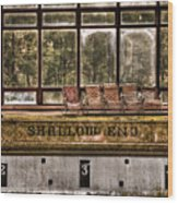 Shallow End Wood Print by Evelina Kremsdorf