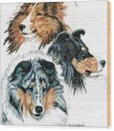 Shetland Sheepdogs Wood Print by Kathleen Sepulveda