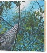 Skyward Wood Print by William  Brody