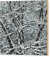 Snow Tree Wood Print by Nadi Spencer