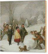 Snowballing   Wood Print by Cornelis Kimmel
