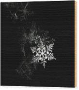 Snowflake Wood Print by Mark Watson (kalimistuk)