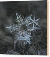 Snowflake Of 19 March 2013 Wood Print by Alexey Kljatov