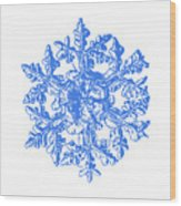 Snowflake Vector - Gardener's Dream White Version Wood Print by Alexey Kljatov