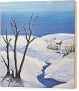 Snowy Scene Wood Print by Reb Frost