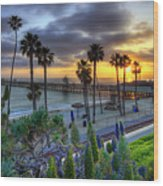 Southern California Sunset Wood Print by Sean Foster