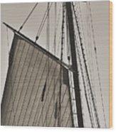 Spirit Of South Carolina Schooner Sailboat Sail Wood Print by Dustin K Ryan