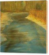 Spring Thaw Wood Print by Julie Lueders