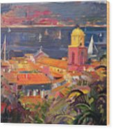 St Tropez Sailing Wood Print by Peter Graham