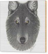 Stepinwolf Wood Print by Jackie Meyers