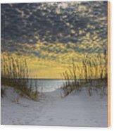 Sunlit Passage Wood Print by Janet Fikar