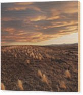 Sunset On The Ridge Wood Print by James Steele