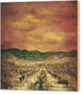 Sunset Over Vineyard Wood Print by Jill Battaglia