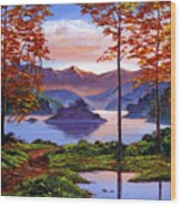Sunset Reverie Wood Print by David Lloyd Glover