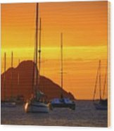Sunset Sails Wood Print by Karen Wiles