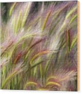 Tall Grass Wood Print by Marty Koch