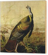 The American Wild Turkey Cock Wood Print by John James Audubon
