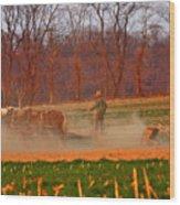 The Amish Way Wood Print by Scott Mahon