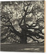 The Angel Oak Wood Print by Susanne Van Hulst