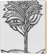 The Apple Tree Wood Print by Aniko Hencz