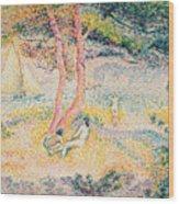 The Beach At St Clair Wood Print by Henri-Edmond Cross
