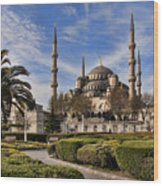 The Blue Mosque In Istanbul Turkey Wood Print by David Smith