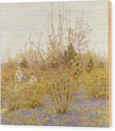 The Cuckoo Wood Print by Helen Allingham