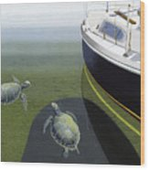 The Curiosity Of Sea Turtles Wood Print by Gary Giacomelli