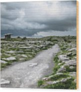 The Dolmen In The Burren Wood Print by Menega Sabidussi