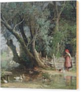 The Duck Pond Wood Print by Eduard Heinel