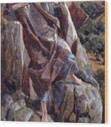 The Good Shepherd Wood Print by Tissot