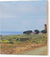 The Light At Piedras Blancas - San Simeon California Wood Print by Christine Till