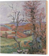 The Puy Barion At Crozant Wood Print by Jean Baptiste Armand Guillaumin