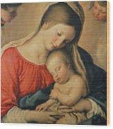 The Sleeping Christ Child Wood Print by Il Sassoferrato