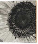 The Sunflower Wood Print by Michael Wade