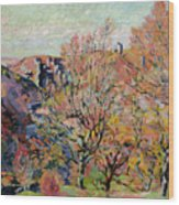 The Valley Of The Sedelle In Crozant Wood Print by Jean Baptiste Armand Guillaumin