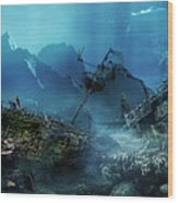 The Wreck Wood Print by Mary Hood