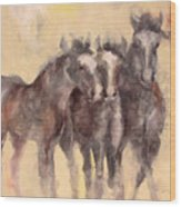 Through A Horses Ears Wood Print by Ron Patterson